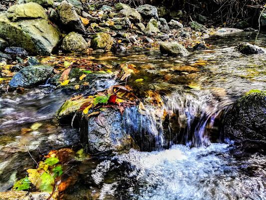 Il colore dell'acqua. di Icca