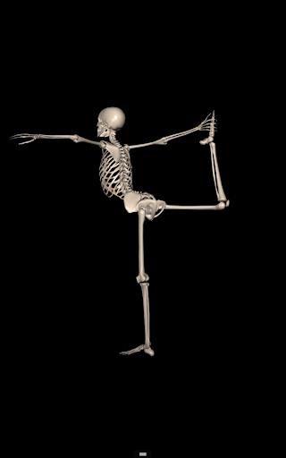 Anatomy For Artists Yoga Pose Apk Download Apkpure