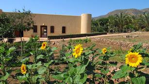 Jardín Botánico El Albardinal en el Parque Natural de Cabo de Gata-Níjar. Imagen Andalucia.org.