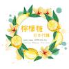 檸檬糖日本代購