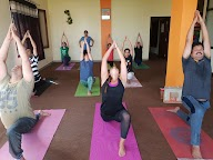 Bhaskar Yoga And Wellness photo 1