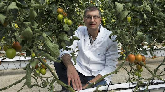 """""""La agricultura cada vez es mas sofisticada, mas técnica, y no solo en Almería"""""""