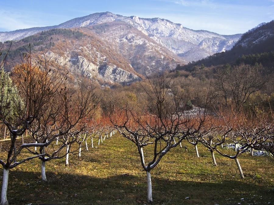 by Estislav Ploshtakov - Landscapes Mountains & Hills