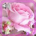 Flowers Amazing icon