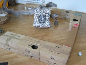 Photo: Am Anfang lag der Baum mitten im Zimmer und gleich dazu eine Katzenspielburg..... (Katzenzimmer)