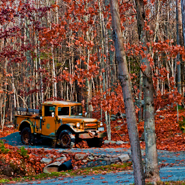Jeep in the fall by Gerri Macilvane - Transportation Automobiles ( fall, truck, yellow )