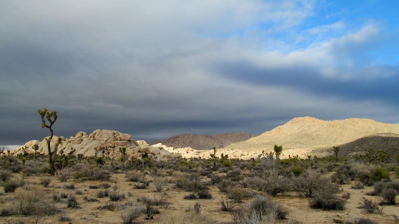 Photo: Spotlight and dark skies