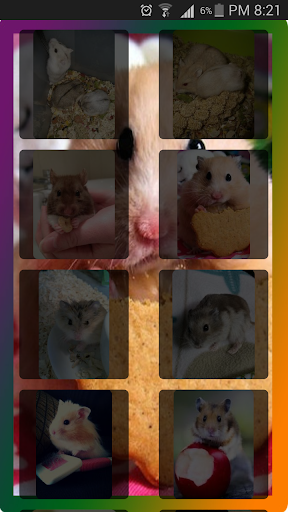 Tile Puzzle _ Hamster