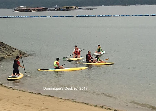 getting started on paddling in the water