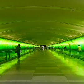 Tunnel by Lorna Littrell - Buildings & Architecture Other Interior ( structure, building, green, symmetry, architecture, tunnel,  )