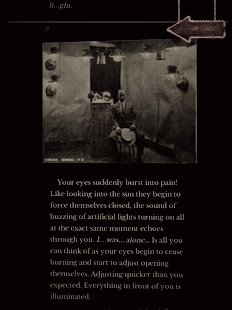 Seul (Alone) The entrée - Text Based Thriller CYOA screenshot