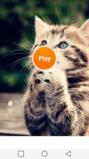 玩休閒App|マッチング猫免費|APP試玩