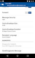 Screenshot of Business Class Email (BCE)