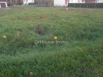 terrain à Brinon-sur-Sauldre (18)