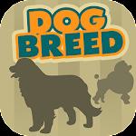 Dog Breeds Fun Trivia Quiz