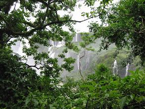 Photo: Falls through the trees