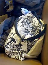 Photo: Paikallinen muumireppu kahvilassa - pala Suomea Japanissa