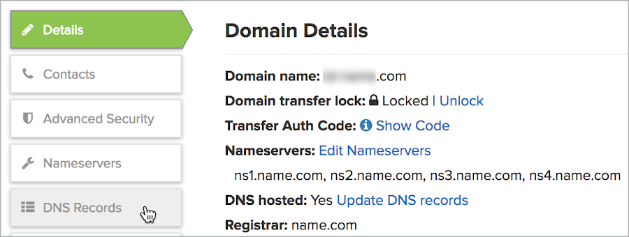 Domain Details and DNS Records is selected