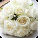 Rose White Live Wallpaper icon