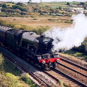 The Flying Scotsman by Sarah Tregear - Transportation Trains ( cornwall, marazion, flying, steam train, steam, railway, scotsman, tracks, train )