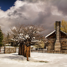 Old Cabin by Bill Dickson - Buildings & Architecture Decaying & Abandoned ( old cabin building coloorado winter,  )