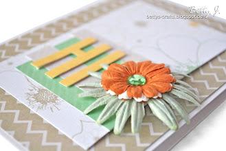 Photo: http://bettys-crafts.blogspot.de/2013/06/hi-die-dritte.html