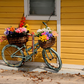 Colors of Key West by Jim Schlett - Buildings & Architecture Public & Historical ( fl, bike, house, yellow,  )