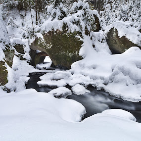 Winter in the Czech Switzerland National Park by Petr Musil - Nature Up Close Water ( water, winter, park, national, ice, czech, switzerland, trees, rock )