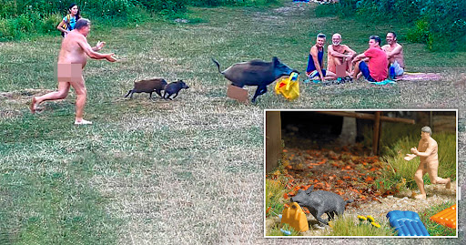 German nudist chasing wild boar that stole laptop is made into a toy
