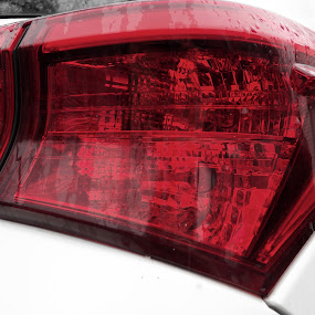 Tail Light by Renee LaFlesh - Transportation Automobiles (  )