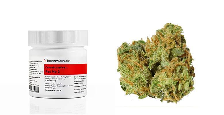 Medyczna marihuana już dostępna w aptekach - oficjalna informacja od  Spectrum Cannabis - FaktyKonopne.pl