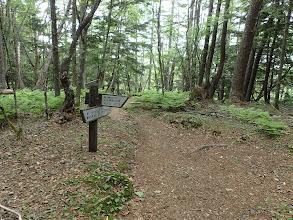 櫛形山からの道と合流