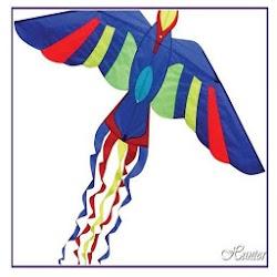 Kites - Whats News