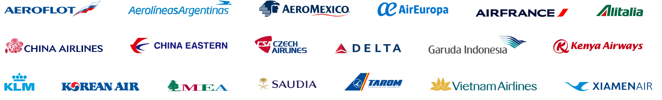 Image of logos of all airlines part of Sky Team including Delta, Airfrance, Korean Air, China Airlines, and Aero Mexico