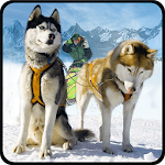 Snow Dog Sledding Simulator 3D Icon