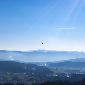 Fly like an eagle by Tom Mat - Landscapes Mountains & Hills ( hills, mountains, eagle, evening, smoke )
