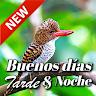 com.TopIdeaDesign.Spanish.BuenosDiasBuenasNoches.DeseosMensajes