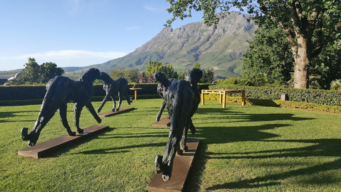 На минуточку в ЮАР - Кейптаун - Стелленбош (винные земли) - Херманус
