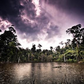 Dead Lakes by Johari Nasib - Landscapes Forests