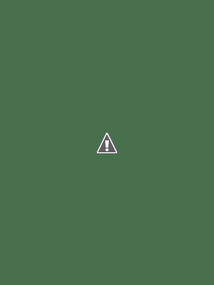 Dendrobium blanc  ENgIblx2rYnjZGvid7OCBDJ6lvPre2j1fRT4gqRHALUAK2TBl13HLaE9HuYnNW1fgykJ0r3oMr9kiIElxTfYxWRVSvYYIT9sxQ3djQJ17hDyrvO5kHHQlgovZ_1GWEEPbp5ENkPAQgEEH6fyurRL-dXzn21llYzsuZ1USY4jd6yfqVXxG04ACQ0CuEHAtd16Jhsh6w2xvZG4q-1llPdR__Y8hBvkAXck-3qChYxcO3mO9AVubwjbPfcmvAcnDCUq5VCtt5CeOnjp7wRnzfecMAzFNnQk6QQEsztnOh8R2fQcATqQPDnl0geAJ4wxiTnCGyz-7kjdPacyTjqB8jcq5HZiJ4x83beQLJYVQcF7XtDBdL412yCCk_Q1Bd9XgGKcHYWEBlcSFHfNt0f98jmcF8TSMv1HGzGP8pNuqN7nbF93KMlleeJ36SFWYOUuaENklvQGh-BjTJD_pblvdJ8pGWdq-tpLPHI_njpkAZn59aE7Qeg2MF5UeO3dbCFbo15yeuimsz1rXawgB8E3QDOvOzeY_a3dJkfpppOKBaQ0thzbzYFs6iGCdPa0KY9fIEf5Gdcw-2Lbgji0vL5LMK0TM6fMPqxyv4lKyfZZAIbqwGegWzLBRCdANM0_McwG3DPfBttMv0ZIvuAdXgbMPGR5DvY3blKEdwWtvamMFJd4OQrKwgRRtp5dnz3s-w47TA=w716-h954-no?authuser=0