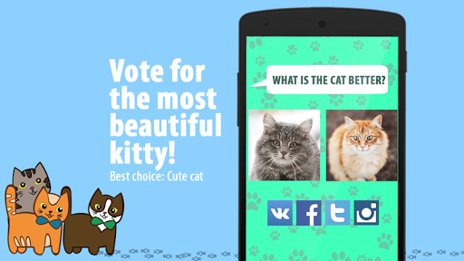 Best Choice: Cute Cat