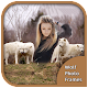 Wolf Photo Frames (app)