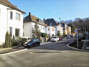 Photo: Im Hintergrund rechts queren die Straßen ,Stadtgartenallee' und ,Am Waldhang' das Bild; sie sind im Waldesdunkel aber nicht deutlich auszumachen.