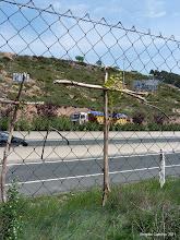 Photo: le long de l'autoroute