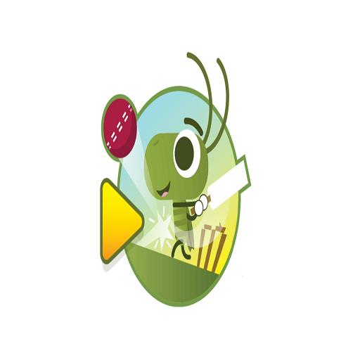 Doodle Bug Cricket