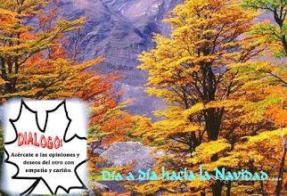 Photo: Hojas de arce en otoño.
