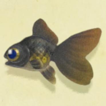 森魚 南半球 あつ 【あつ森】魚図鑑一覧