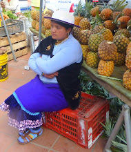 Photo: She is from the coast, two hours away by truck, where the pineapples grow