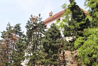Photo: Ptujski zamek na skałce