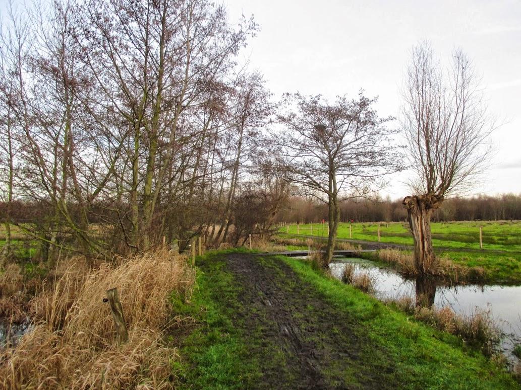 natuurgebied Gemene Weidebeek